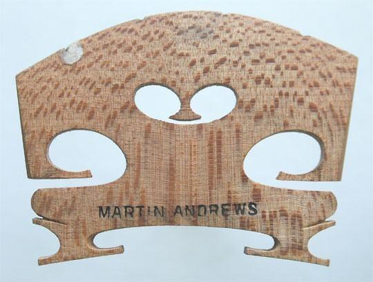 martin andrews – violin