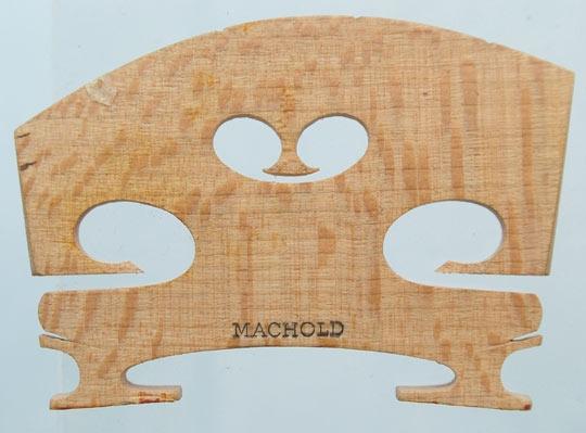 machold – violin